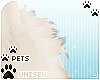 [Pets] Kimi | hip tuft