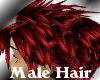 (LL)XKS RED Reno Male