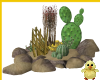 !! Cactus Group no/poses