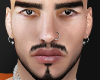Cortez brows/beard