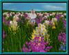 (A) Field of Flowers