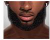 Lebron Beard