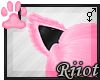 !R; Cate Tail V1