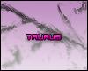 (*Par*) Taurus