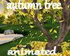 !Early Autumn tree ANIM
