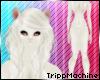 Albino Ferret Fur F