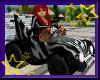 [2709]Zebra Go Cart