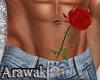 ak   surprise rose