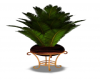 [BB] Plant on Stand