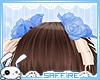 Hair Roses Ribbons Blue