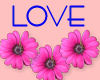 Love with pink flowers