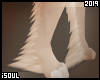 ♦| Lion | Leg tuft
