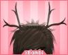 xb| Rucane Antlers