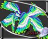 Parrot King wings