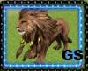 GS BIG LION PET ANIMATED