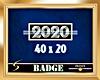 2020 Silver Badge