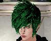 Rein Grn and Blck hair