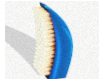 Elite Wave Brush (Blue)