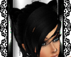 R. Kitten Ear