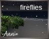 Island Fireflies