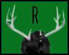 Light Grey Antlers