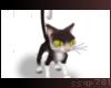 Oreo   Cartoon Cat 🐾