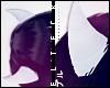 ۞ Horns ▸ White