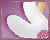 Kitteh Tail V9