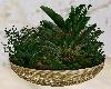 Home / Plant 3