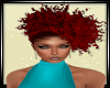 ~SD~ LIDIA 2 RED