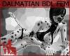 +KM+ Dalmatian Bdl FEM