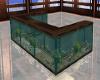 ~TQ~elegant fish tank