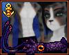 AuShep Male Fur V2