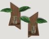 Wall Plants // B