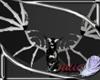 (CVD)anyskinQueenwings
