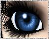 [P] Deep Blue Eyes