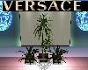 VERSACE LUXE PLANT SET