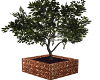 Potted Lit Tree-2