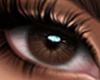 Serena Eyes Dark Brown