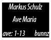 Markus Schulz-Ave Maria