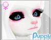 [Pup] Muzzle Head