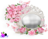 roses butterfly mirror