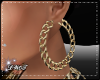 D- Golden Chain Earrings