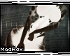 [x] Myau Kini