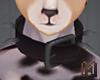 MIX-N-MATCH Dog Collar 2