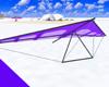 Hang Glider Violet