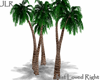 Animated Palm Cluster