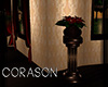 .:C:. Rose column plant