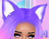 🅜 CANDY: lilac ears