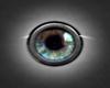 eyes blue grey XI